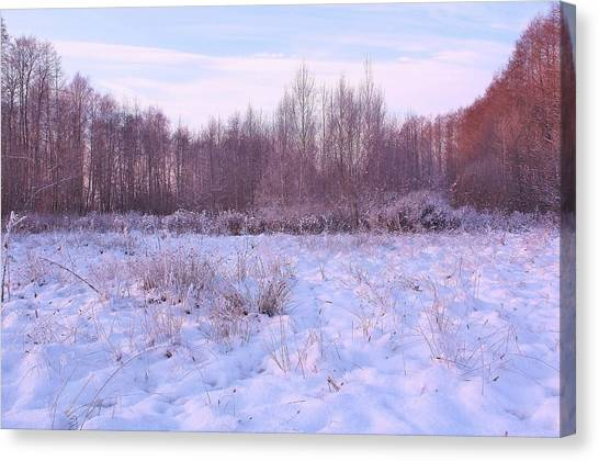 Canvas Print - Countryside, Wintertime by Slawek Aniol