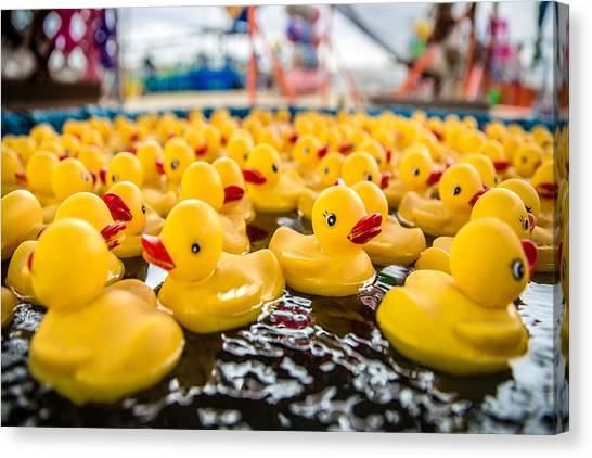 Ducks Canvas Print - County Fair Rubber Duckies by Todd Klassy