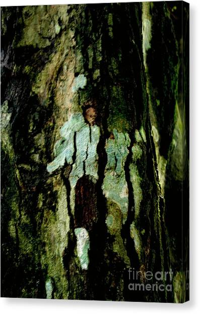Couple On A Tree Canvas Print