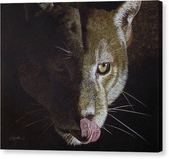 Cougar Night Canvas Print