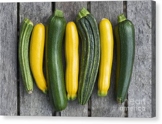 Zucchini Canvas Print - Courgette Harvest by Tim Gainey