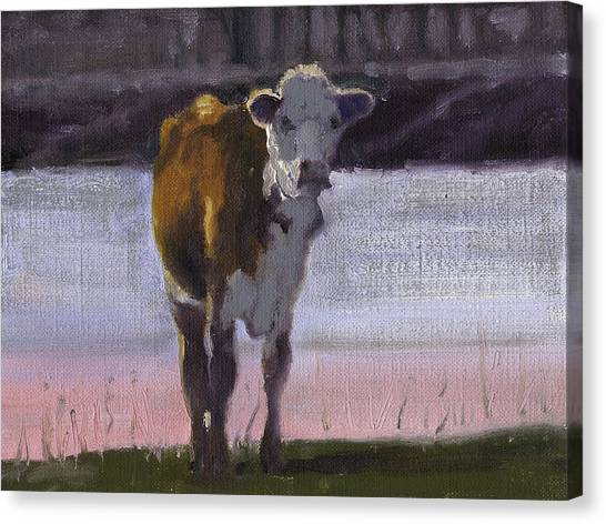 Cow At The Pond Canvas Print