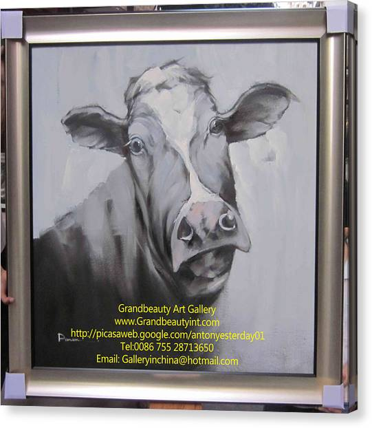 cow Canvas Print by Darren