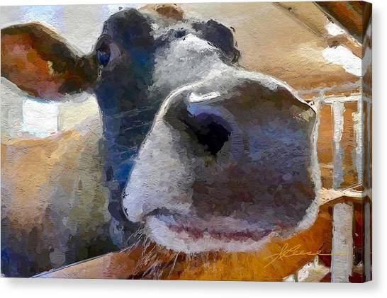 Cow Face Close Up Canvas Print