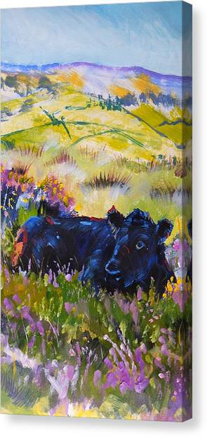 Cow Lying Down Among Plants Canvas Print