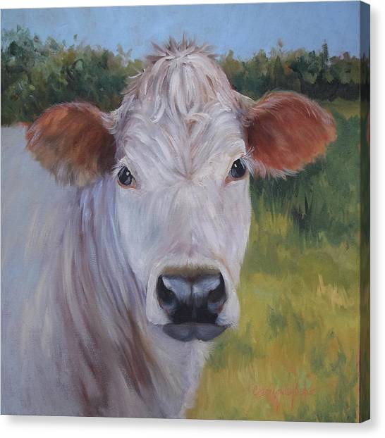 Cow Painting Ms Ivory Canvas Print