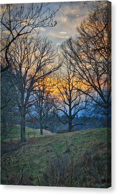Cow Pasture At Dusk Canvas Print