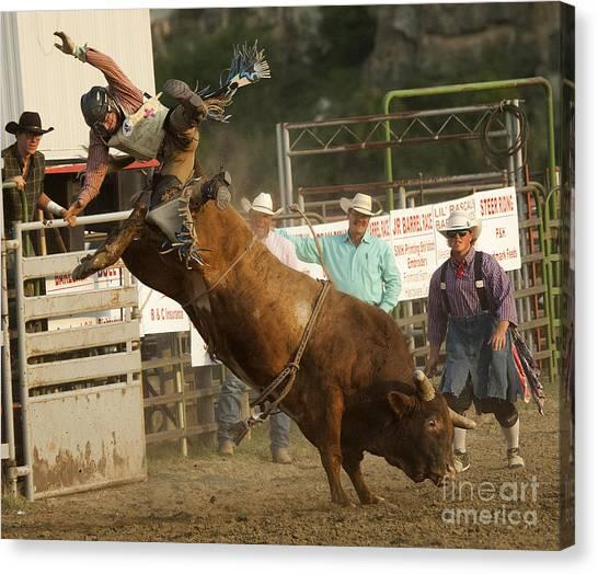 Bull Riding Canvas Print - Cowboy Art 2 by Bob Christopher