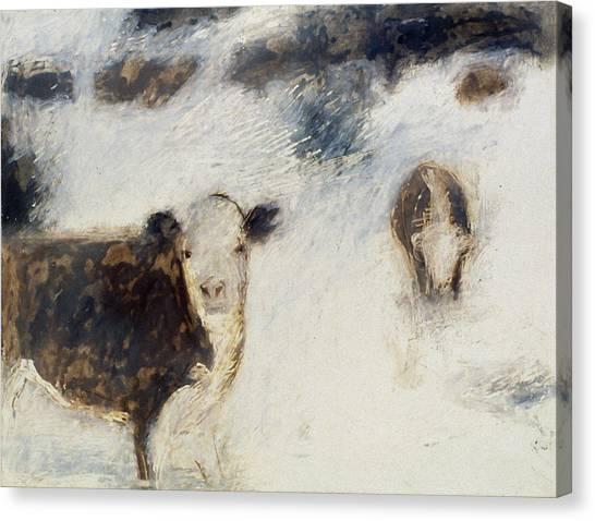 Cows In Snow Canvas Print by Ruth Sharton