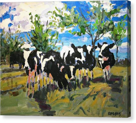 Cowscape Canvas Print by Brian Simons