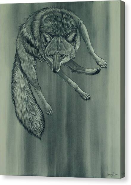 Charcoal Canvas Print - Coyote by Aaron Blaise