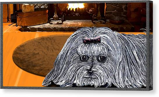 Canvas Print featuring the drawing Cozy Maltese by Michelle Audas