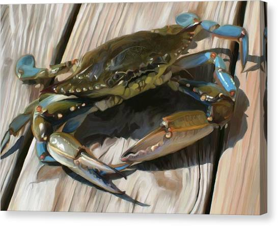 Crabs Canvas Print - Crabbie by Patti Siehien
