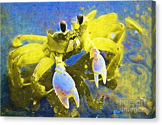 Crabs Canvas Print - Crabby And Cute by Deborah Selib-Haig DMacq