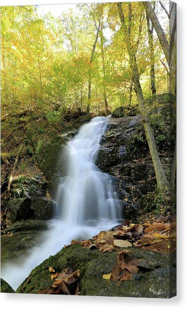 Crabtree Falls In The Fall Canvas Print