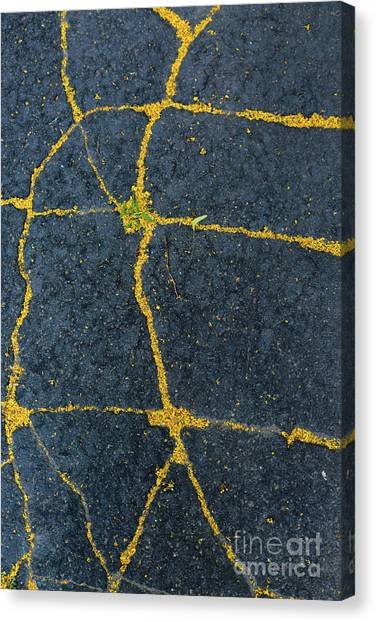 Cracked #1 Canvas Print