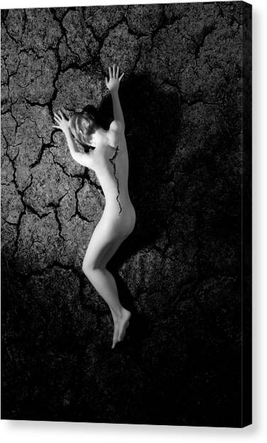 Cracked Desire  Canvas Print