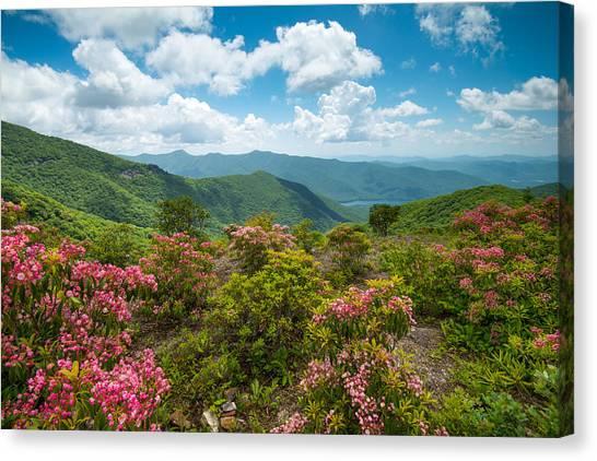 Craggy Gardens Blue Ridge Parkway Stunning Vista Canvas Print