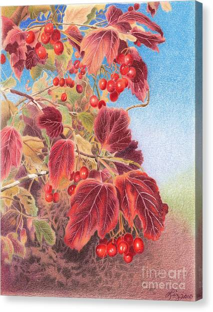 Cranberry Bush In Autumn Canvas Print