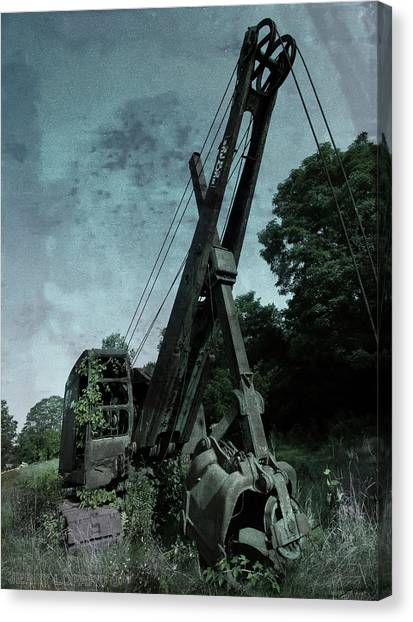Cranes Canvas Print - Crane by Jerry LoFaro