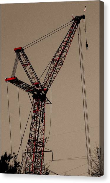 Crane's Up Canvas Print