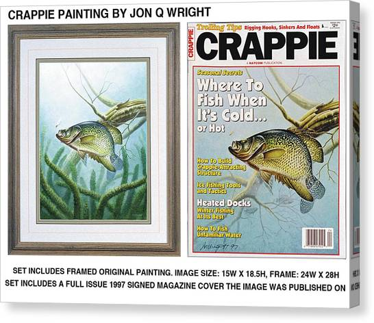 Freshwater Canvas Print - Crappie And Minnows by JQ Licensing