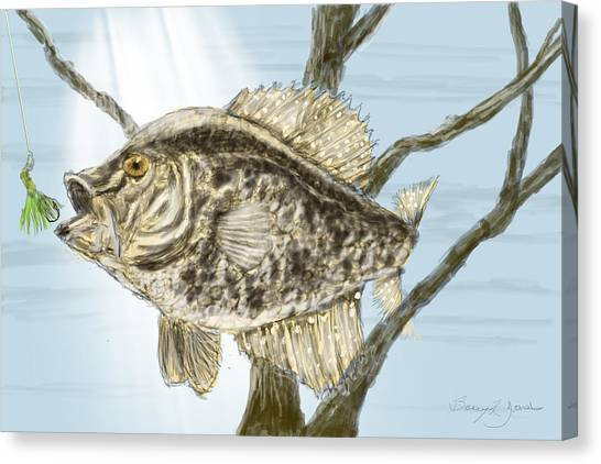 Crappie Time - 2 Canvas Print