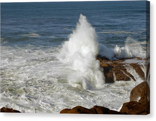 Crashing Waves Canvas Print by Curtis Gibson