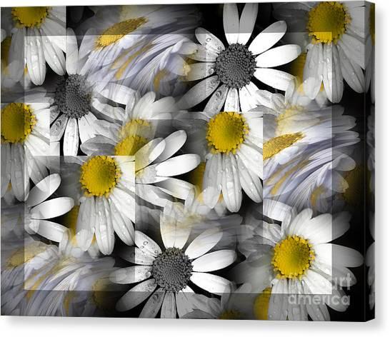 Crazy Daisys Canvas Print