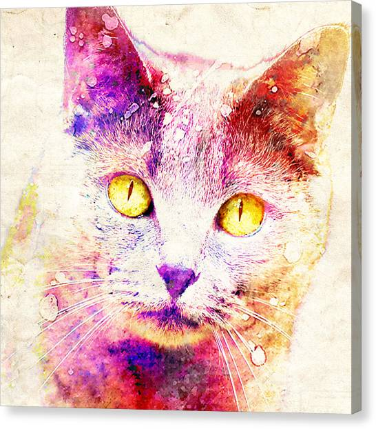 Chartreuxes Canvas Print - Spooky Cat by Stacey Chiew