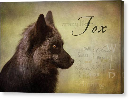 Crazy Like A Fox Canvas Print