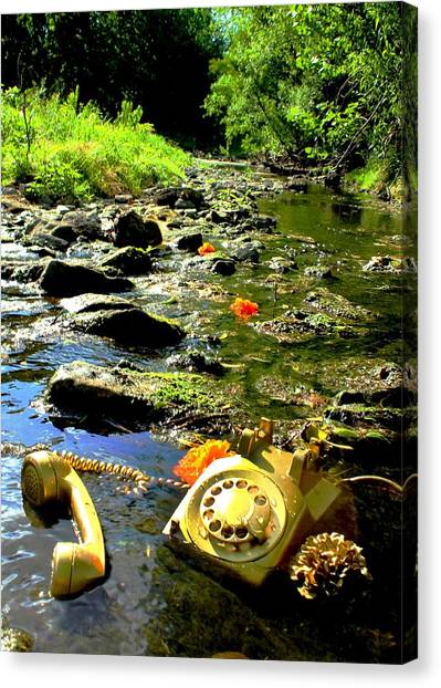 Creek Call Canvas Print