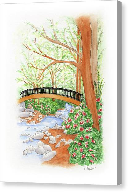 Creek Crossing Canvas Print