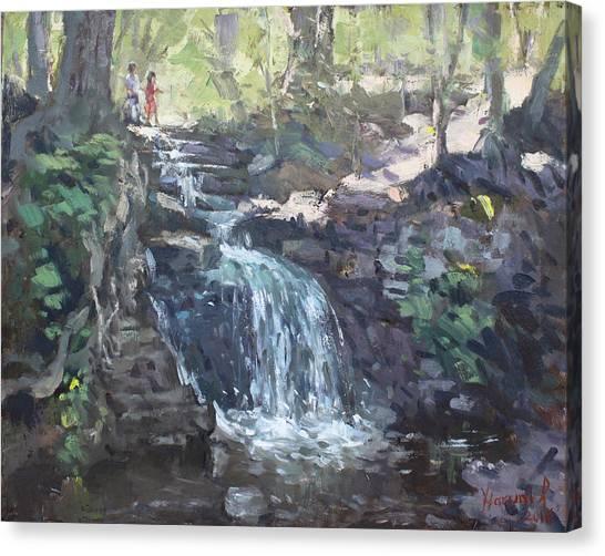 Georgetown University Canvas Print - Creek Falls  by Ylli Haruni