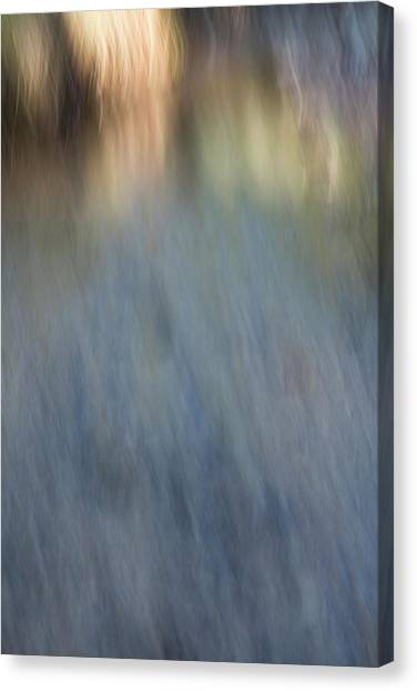 Creek Light Canvas Print