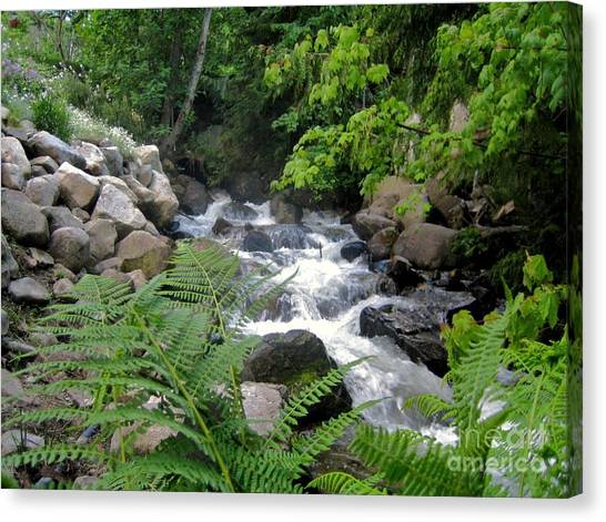 Creek Canvas Print by Reb Frost