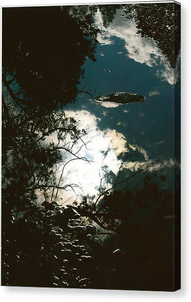 Creek Soul Canvas Print by Thor Sigstedt