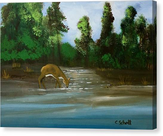Creekside Drink Canvas Print
