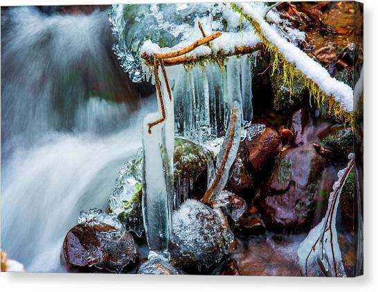 Creekside Icicles Canvas Print
