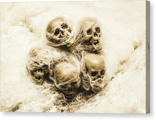 Pirate Canvas Print - Creepy Skulls Covered In Spiderwebs by Jorgo Photography - Wall Art Gallery