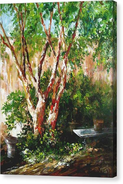 crepe myrtle SOLD Canvas Print