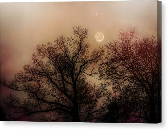 Moon Canvas Print - Crescent Between The Trees by Bob Orsillo