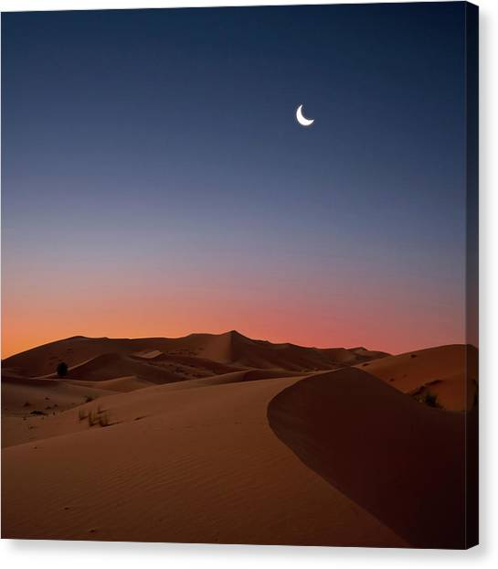 Sahara Desert Canvas Print - Crescent Moon Over Dunes by Photo by John Quintero