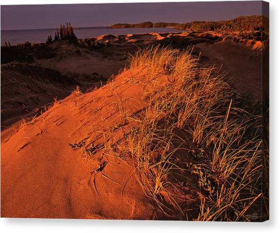 Crimson Dunes Canvas Print