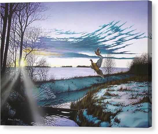 Crisp Winter Light Canvas Print