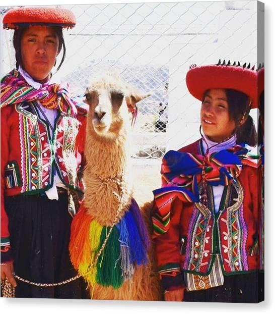 Llamas Canvas Print - #cristoblanco #cusco #peru #alpaca by Arlette Noel