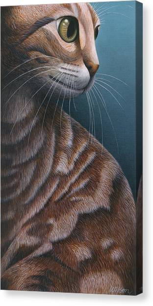 Cat Canvas Print - Cropped Cat 3 by Carol Wilson