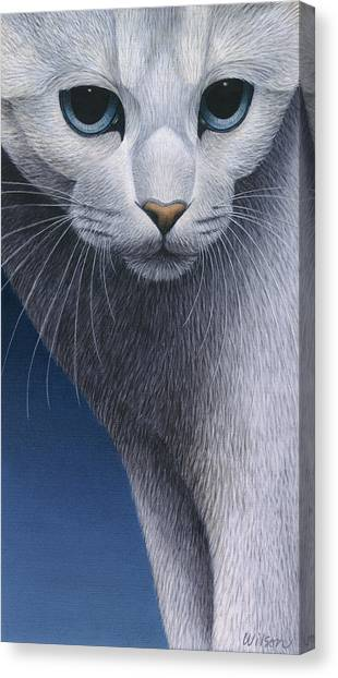 Cropped Cat 5 Canvas Print by Carol Wilson