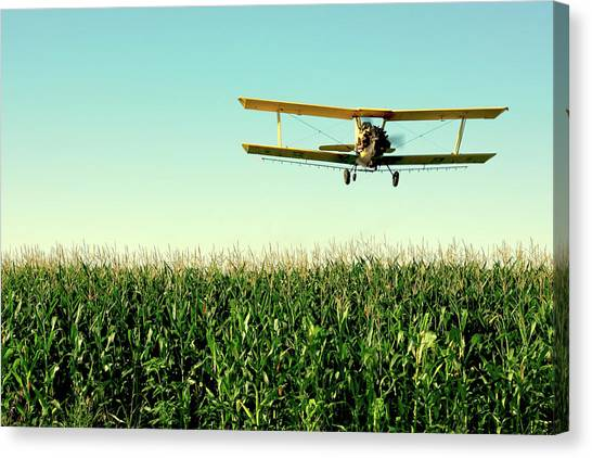 Biplane Canvas Print - Crops Dusted by Todd Klassy