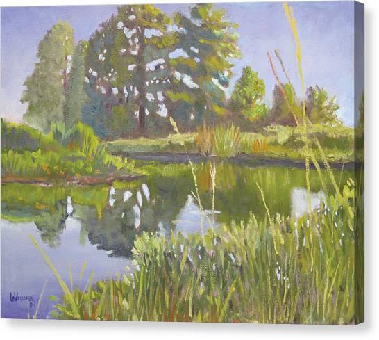 Cross Creek Canvas Print by D T LaVercombe